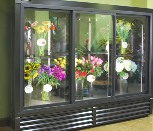Economical Plugin Flower Display Cases And Coolers Src