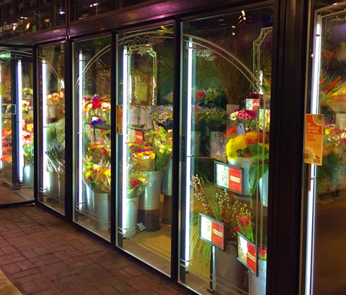 Long Door Floral Units Commercial Refrigeration